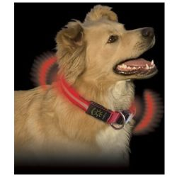 Collar Perro Led Roja Nnd 03 19m IBEROLUSO TECHNOLOGY S.L.