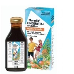 Floradix Kindervital® Fruity 250ml